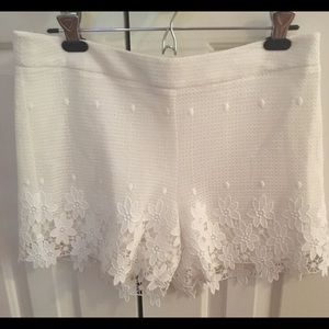 NEW Ann Taylor Lace Trim Shorts